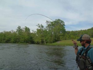 579314 1000242673514 1306291 40021868 802627489 n 300x225 Tennessee Tailwaters   May 16, 2012