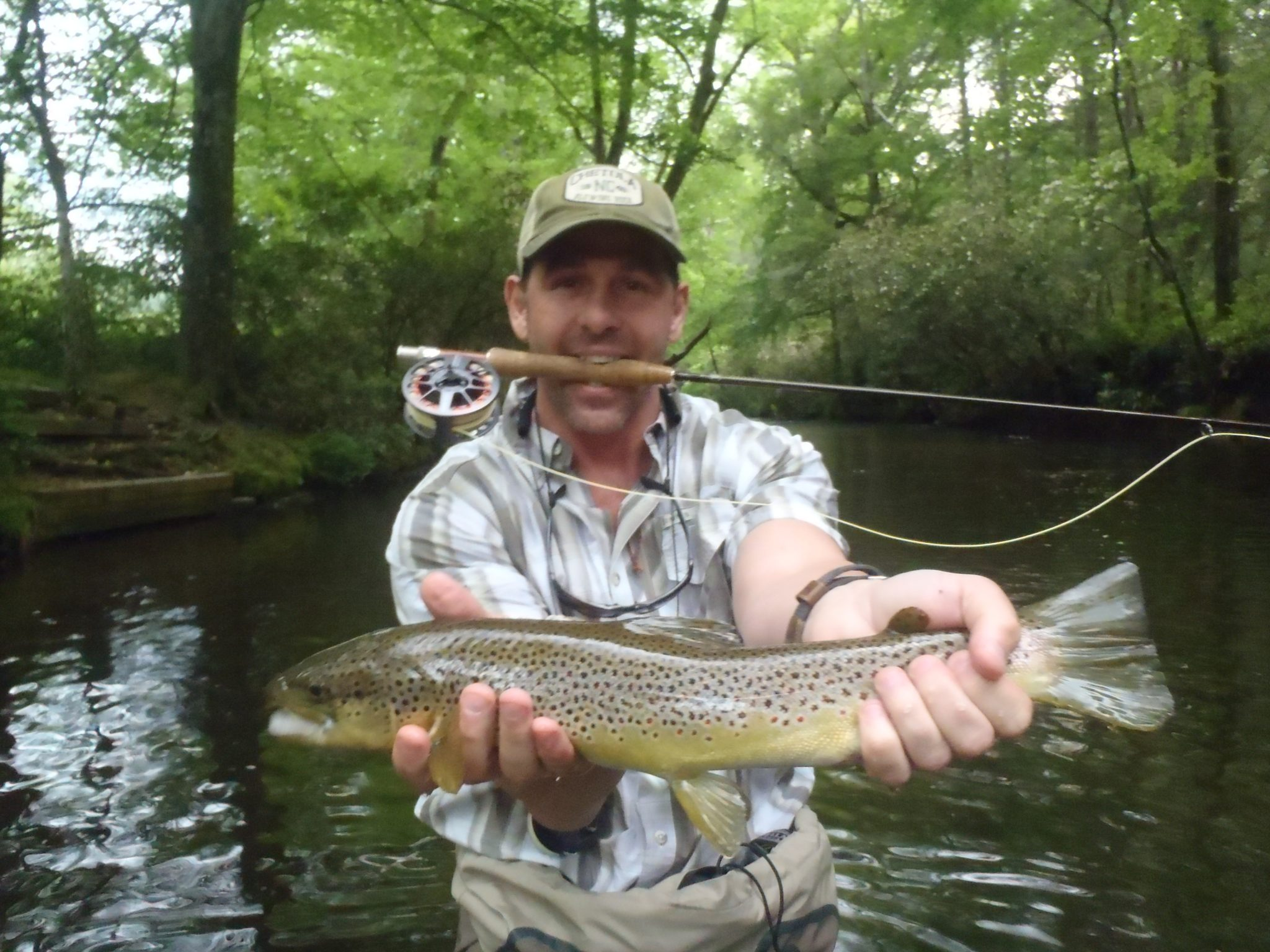 davidson river fishing report for the week of may 22 2012