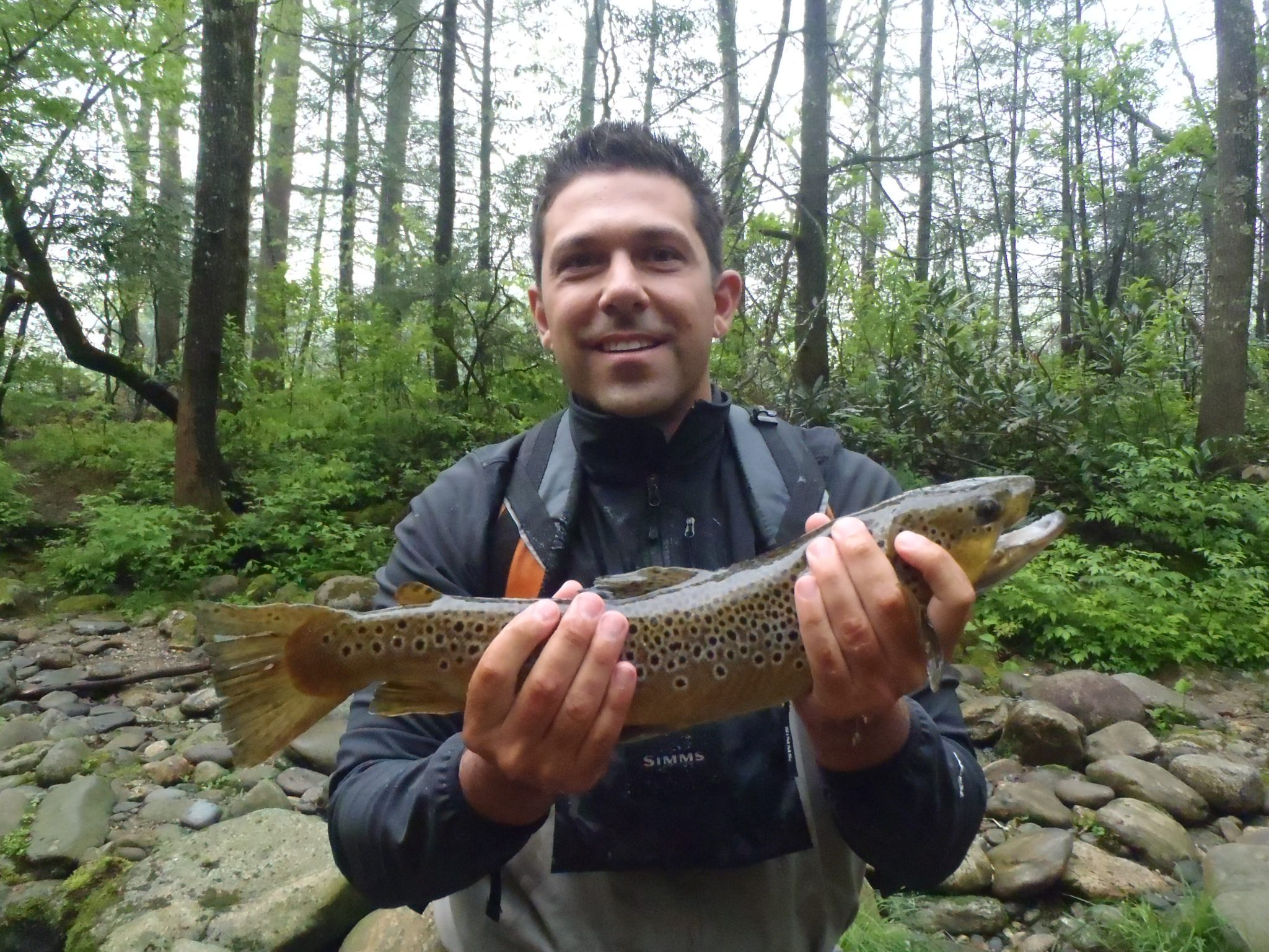 Fly fishing the davidson river cwo for Davidson river fishing report