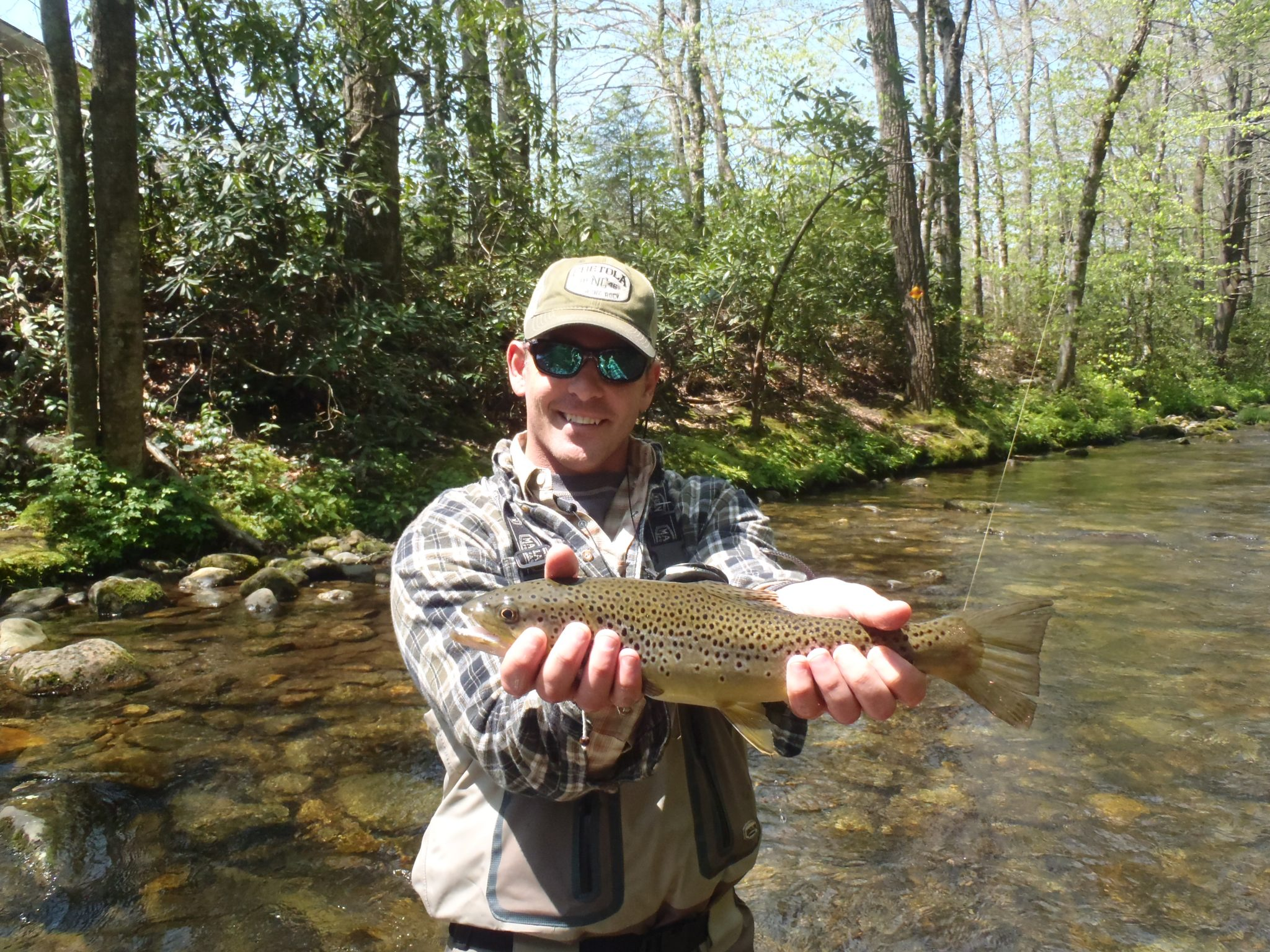 Davidson river fishing report may 15 2012 curtis for Green river fly fishing report