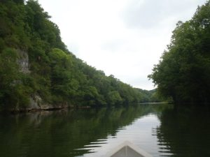 250806 10100139211416014 1400962646 n 300x225 Tennessee Tailwater Stream Report October 30, 2012