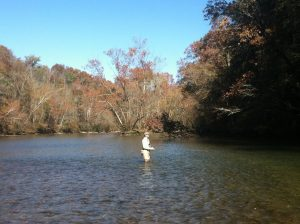 IMG 0832 300x224 Tennessee Tailwater Fishing Report November 6th, 2012