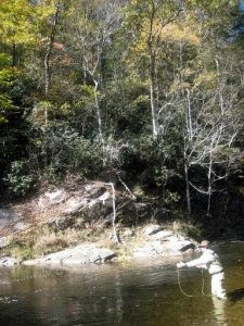 October on Madison Co. DH stream 225x300 Delayed Harvest Stream Report 10 29 12