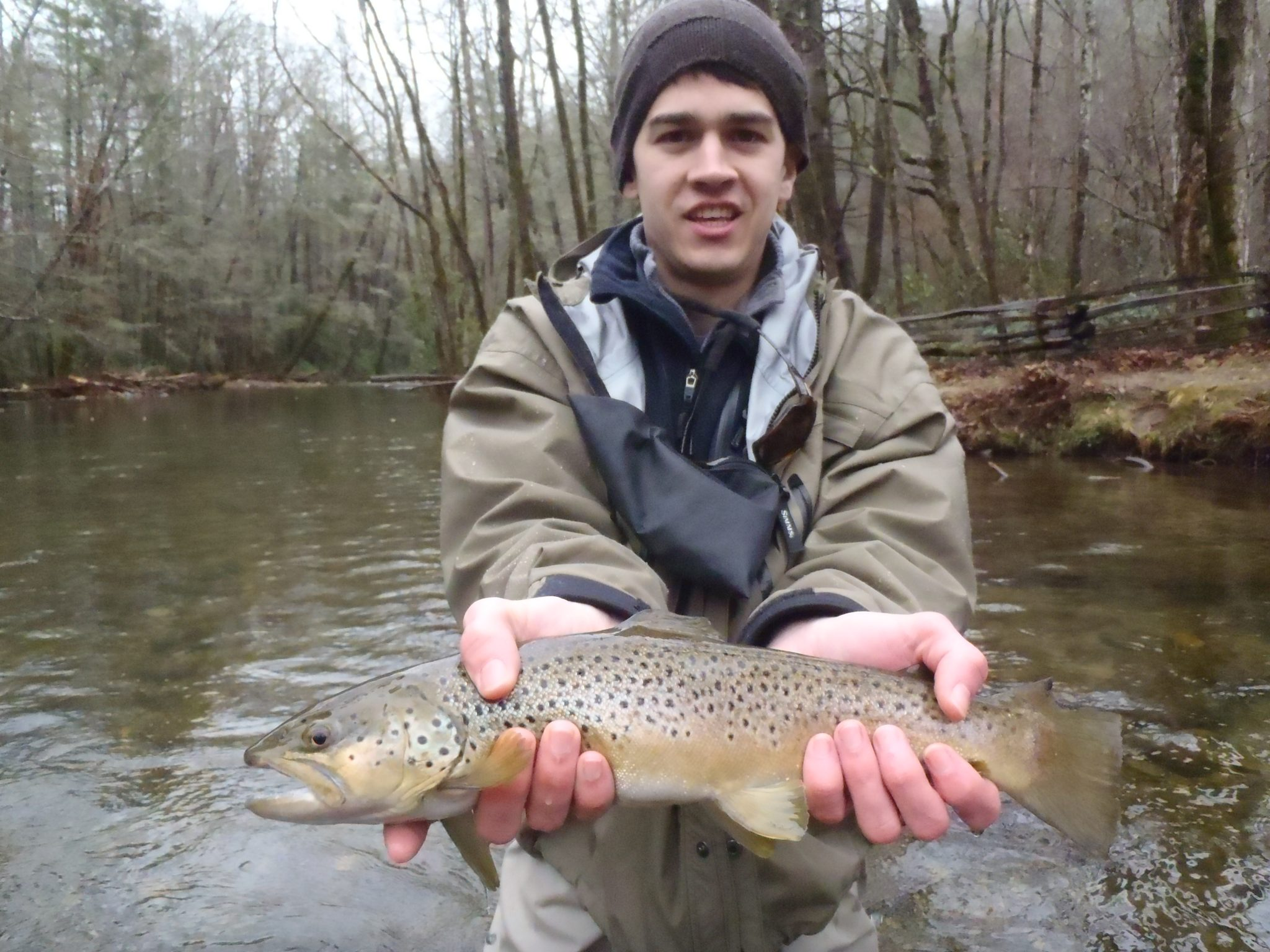 Davidson river fishing report week of march 13 curtis for Davidson river fishing report